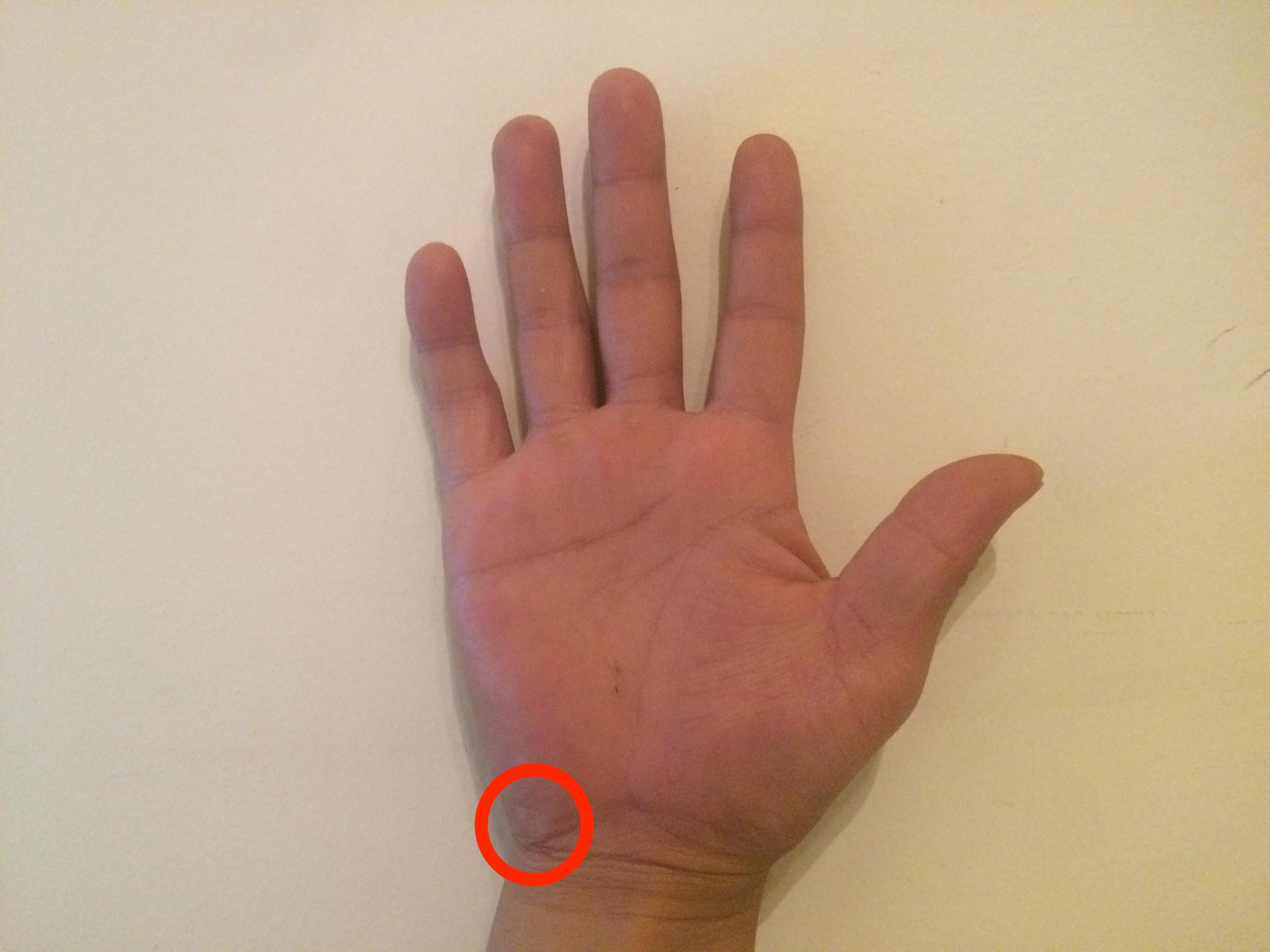 手のひらの付け根にある豆状骨を支点にする